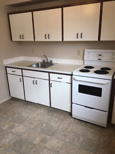 Clean, quiet 1 bedroom Caswell Hill area apartment