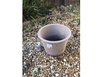 Attractive lipped grey garden pot/planter