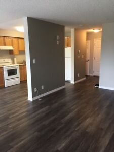 Newly renovated condo available in St. Albert - $1,400