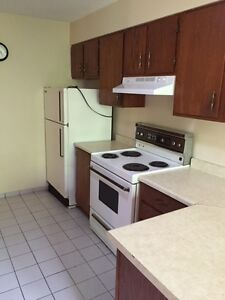 Nice  and beautifull condo for rent