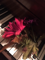 Piano, classical, lessons