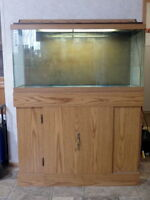Approx 30 gal Fish Tank, stand and all accessories
