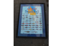 Queensland Seafood species picture, large in frame, ideal for chip shop, restaurant