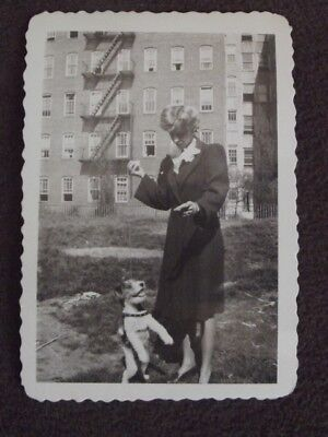 TERRIER DOG STANDING ON HIND LEGS WAITING FOR WOMAN TO THROW BALL Vtg 1943 PHOTO