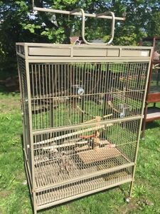 Wrought Iron Bird Cage - African Grey, Amazon, Other Parrots