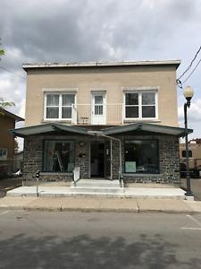 Immeuble à revenu(s) à vendre 6 plex