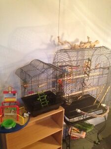 Bird Cage large, small travel cage and birdplayground deal