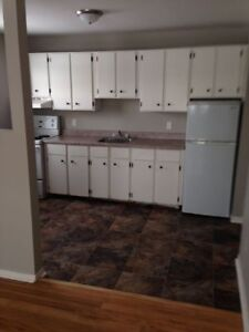 BRIGHT AND CLEAN 2 BEDROOM APARTMENT FOR RENT