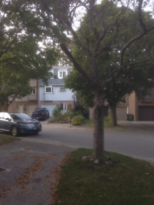 house for rent with 4 bedrooms near Fairview mall(Don Mills TTC)