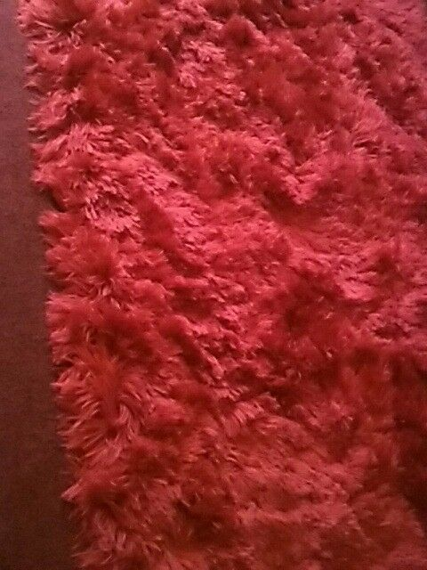 Large red rug 110/ 170