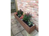 NEW WOODEN TREATED FLOWER BOXES, 80 CM GARDEN TROUGH PLANTER, MANY COLOURS
