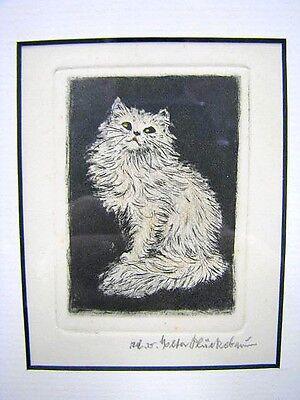 """Teil Farbradierung von Meta Plückebaum """"Weiße Perser Katze"""""""
