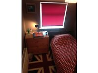 Cozy room in Twickenham suitable for young professional or student! (Available on the 1st of Feb)!