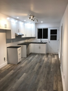 2br - 800ft2 - 2-Bdr Apartment in Griffintown ( Downtown )