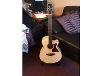 Tanglewood Winterleaf Model TW4 4H