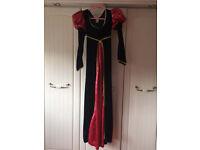 Wicked Queen Dress for Halloween