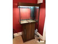 Juwel 60l fish tank and cabinet