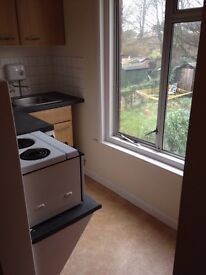 Nice bedsit own shower toilet kitchenette for rent