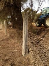 Old fence posts East Pingelly Pingelly Area Preview