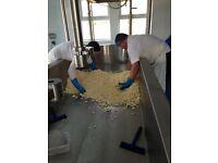 Award winning artisan dairy needs assistant cheesemaker - maternity cover
