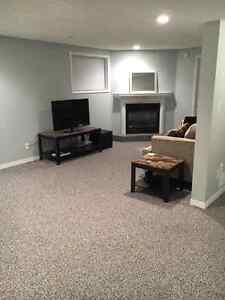 AVAILABLE JANUARY 1 2017!- Lower Level of house Windsor Region Ontario image 1