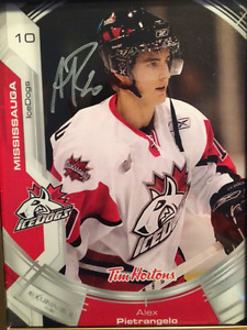 Alex Pietrangelo - Rare Autographed Mississauga IceDogs Picture