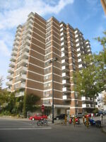 Great location, excellent value, clean and spacious