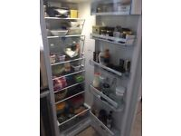Bosch Electronic Upright single door Fridge (Left or right handed) - available early August
