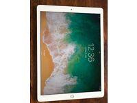 Brand New Apple iPad Pro 512GB, Wi-Fi, 12.9Inch - Gold