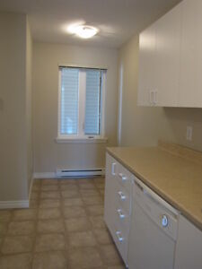 LARGE 2 BEDROOM CONDO STYLE APARTMENT –  $815  872-0692