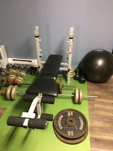 bench + poids libre(dumbells bench press)