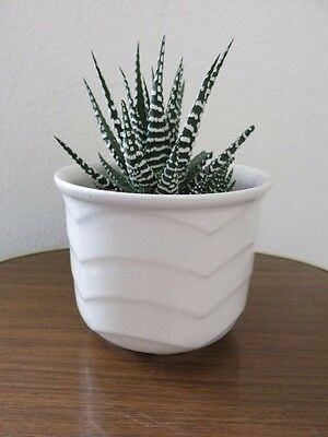 Vintage Mid Century West German Plant Pot Modernist Plant Pot for sale  Shipping to Ireland