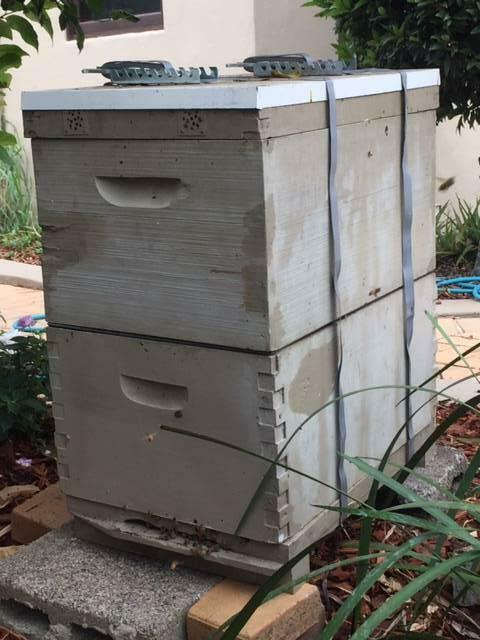 Bee Hive for Sale   Other Home & Garden   Gumtree ...