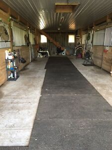 50% OFF YOUR HORSE BOARD Walkerton/Paisley.