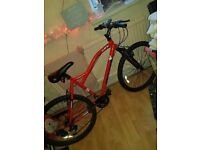 Muddy fox 26' bike excellent condition just need it gone to make room for a new one