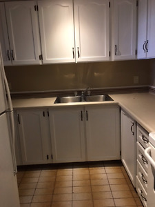 close to downtown, newly renovated, one bedroom, free wifi