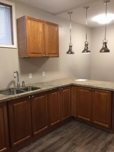 """2 BEDROOM BASEMENT APARTMENT WITH UNUSUALLY HIGH 8'3""""CEILINGS"""