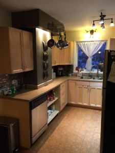 Pet Friendly Two Bedroom + Den house