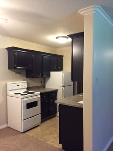 Centre Mall - 2 Bed - No Lease Required