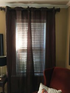 6 chocolate brown, sheer, panel curtains with metal grommets