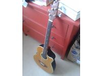 Acoustic fretless bass for sale