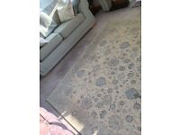 BEAUTIFUL EXTRA LARGE RUG IN DUCK EGG BLUE