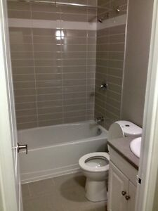 Modern & Newly Renovated 1 Bedroom Suites with Waterfront Views Sarnia Sarnia Area image 12