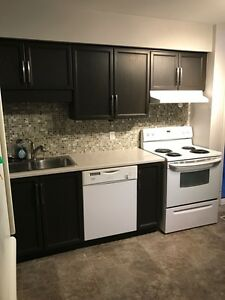 WESTERN: RENOVATED 4 BEDROOM 2.5 BATH STUDENT TOWNHOME - $510/M