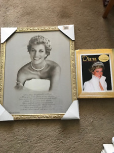 Princess Diana Framed print and book