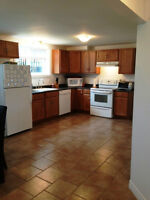 Very Nice 2 BDRM in Forest Hills