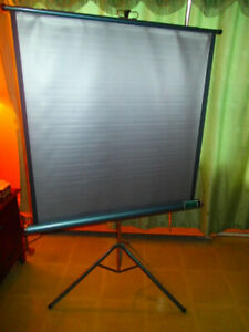 Ecran de projection Radiant 40''x 40'' Diagonal 55''