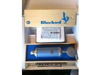 Blue Bluebird Cardioid Condenser Microphone