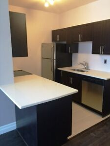 Attn Queens Students -Two Bedroom Luxury in The Hub