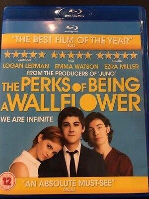 Perks of Being a Wallflower - Blu-ray Region B FAST FREE